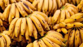 Сообщили, почему дорожают бананы
